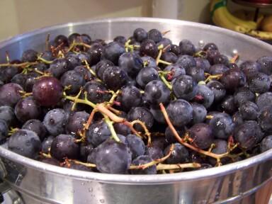 grapejuicing